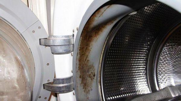 Покрытая плесенью стиральная машина